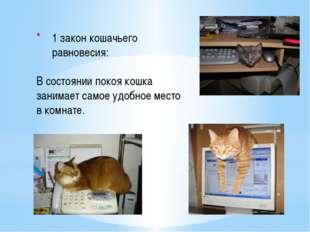 1 закон кошачьего равновесия:  В состоянии покоя кошка занимает самое удобн
