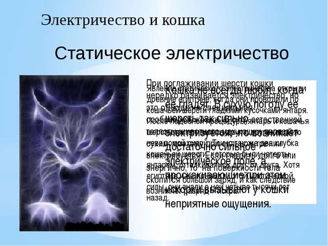 Электричество и кошка Явление статического электричества открыли древние егип...