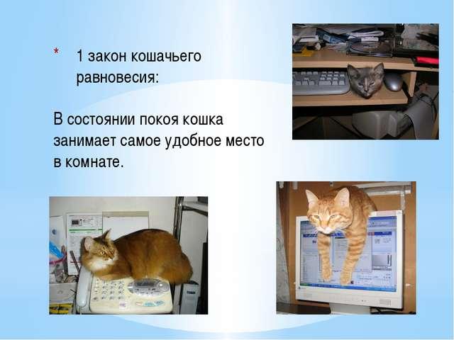 1 закон кошачьего равновесия:  В состоянии покоя кошка занимает самое удобн...
