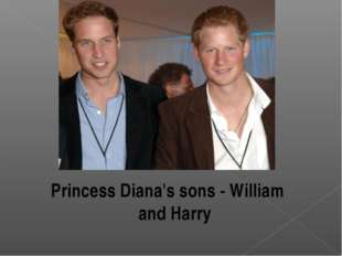 Princess Diana's sons - William and Harry
