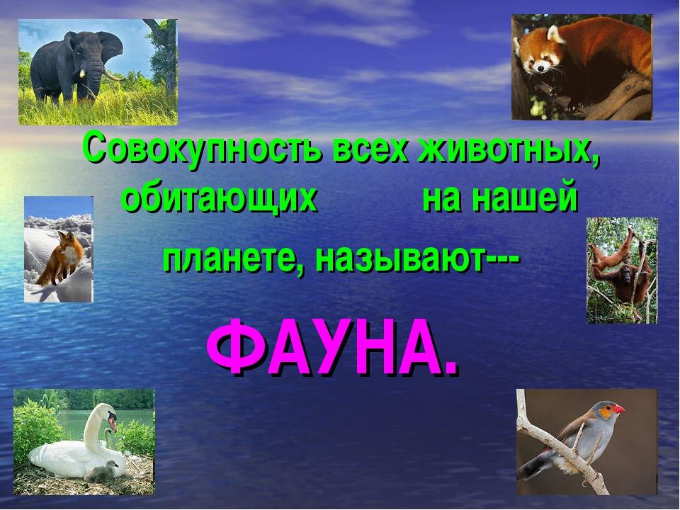 Совокупность всех животных, обитающих на нашей планете, называют--- ФАУНА.