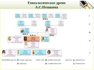 Генеалогическое древо А.С.Пушкина