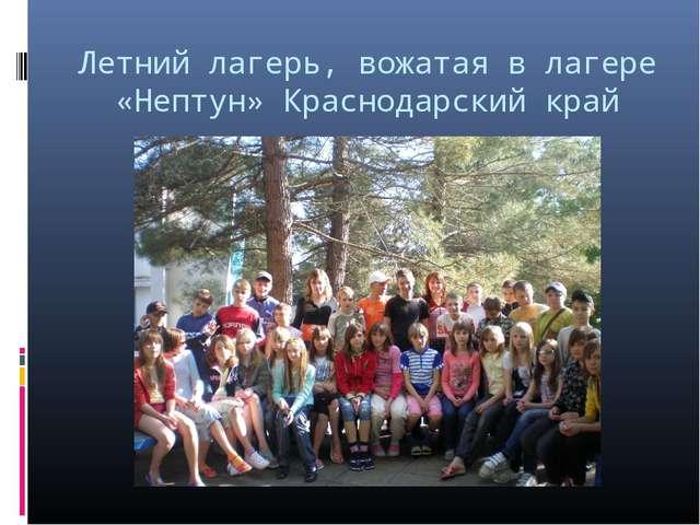 Летний лагерь, вожатая в лагере «Нептун» Краснодарский край