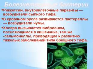Болезнетворные бактерии Риккетсии, внутриклеточные паразиты — возбудители сып