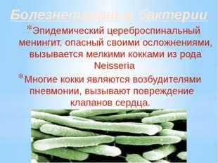 Болезнетворные бактерии Эпидемический цереброспинальный менингит, опасный сво