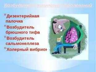 Возбудители кишечных заболеваний Дизентерийная палочка Возбудитель брюшного т