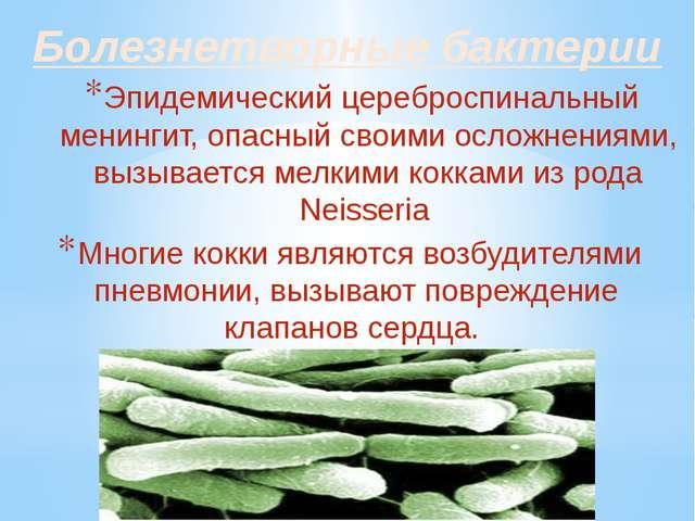 Болезнетворные бактерии Эпидемический цереброспинальный менингит, опасный сво...