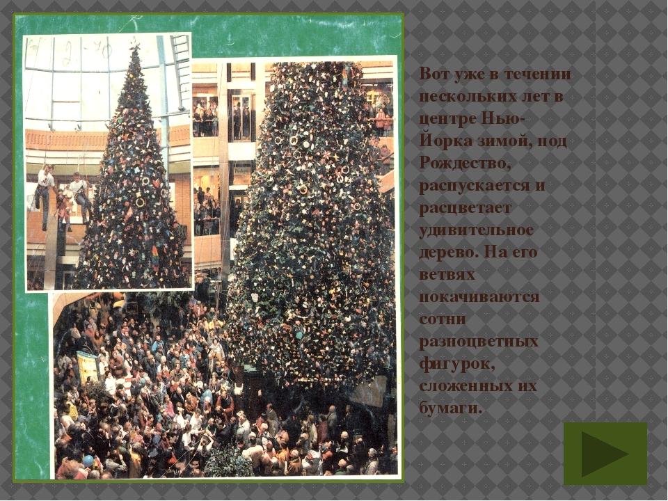 Вот уже в течении нескольких лет в центре Нью-Йорка зимой, под Рождество, рас...