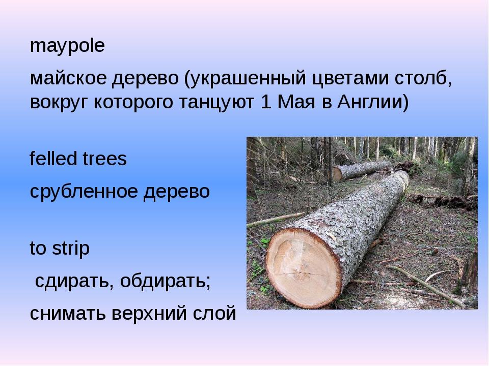 maypole майское дерево (украшенный цветами столб, вокруг которого танцуют 1 М...
