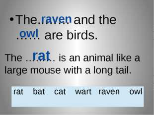The..…… and the …… are birds. raven owl The ……… is an animal like a large mou
