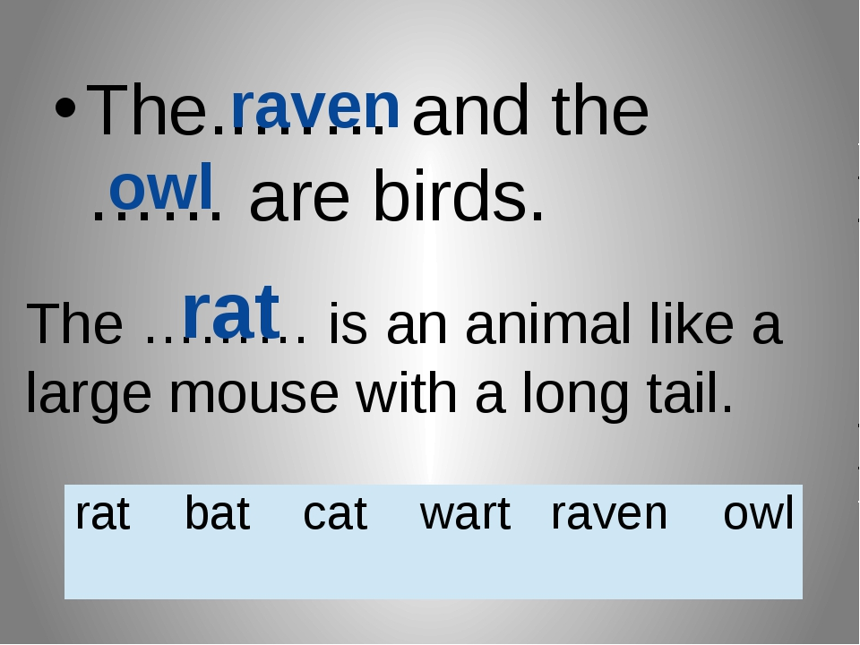 The..…… and the …… are birds. raven owl The ……… is an animal like a large mou...