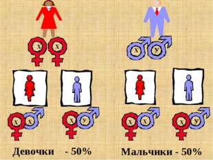 Девочки - 50% Мальчики - 50%