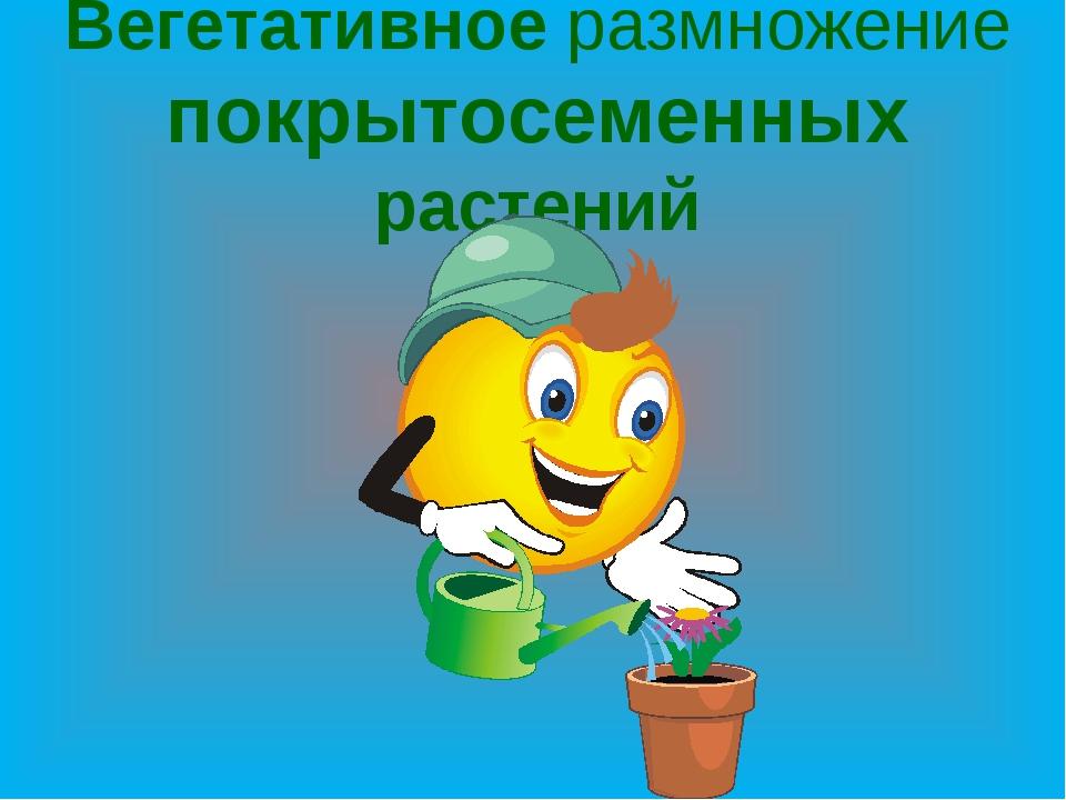 Вегетативное размножение покрытосеменных растений