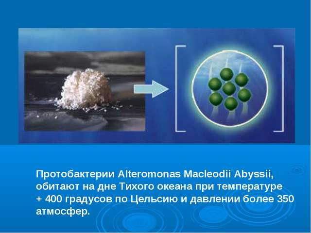 Протобактерии Alteromonas Macleodii Abyssii, обитают на дне Тихого океана при...