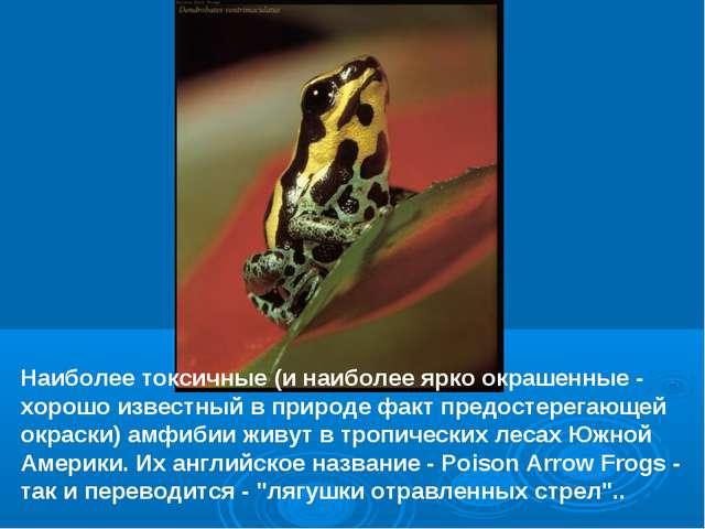 Наиболее токсичные (и наиболее ярко окрашенные - хорошо известный в природе ф...