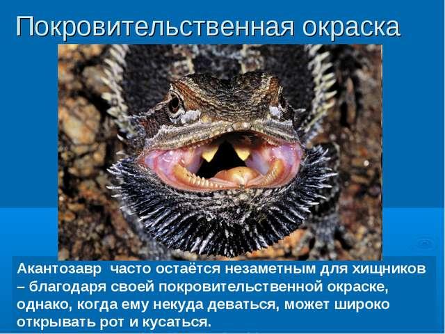 Акантозавр часто остаётся незаметным для хищников – благодаря своей покровите...