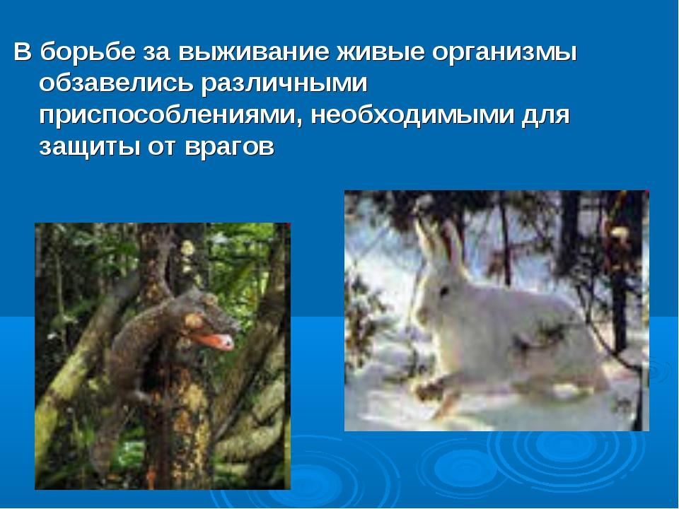 В борьбе за выживание живые организмы обзавелись различными приспособлениями,...