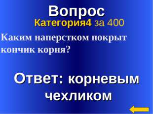 Вопрос Ответ: корневым чехликом Категория4 за 400 Каким наперстком покрыт кон