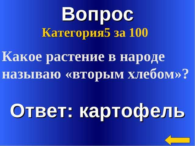 Вопрос Ответ: картофель Категория5 за 100 Какое растение в народе называю «вт...