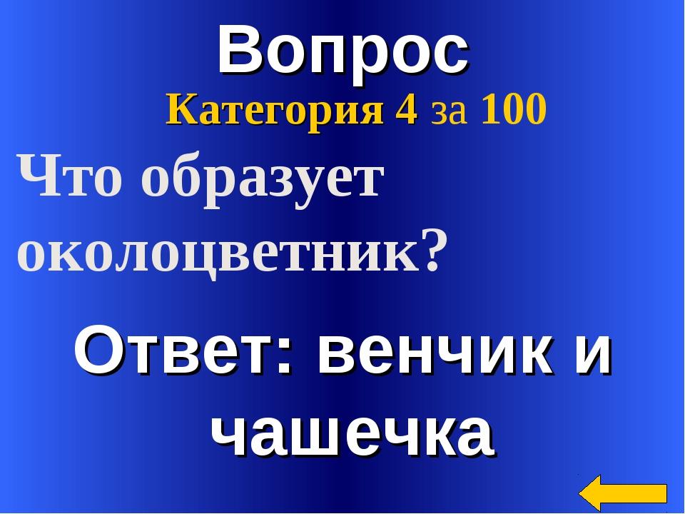 Вопрос Ответ: венчик и чашечка Категория 4 за 100 Что образует околоцветник?