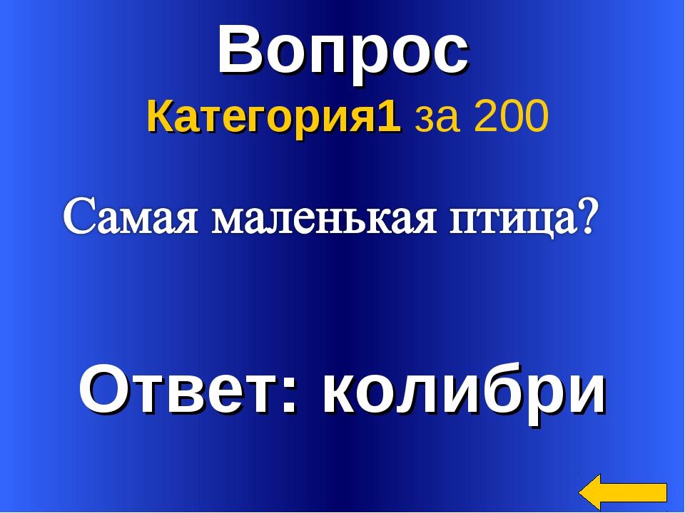 Вопрос Ответ: колибри Категория1 за 200