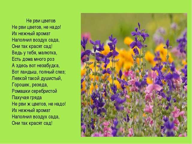 Не рви цветов Не рви цветов, не надо! Их нежный аромат Наполнил воздух сада,...