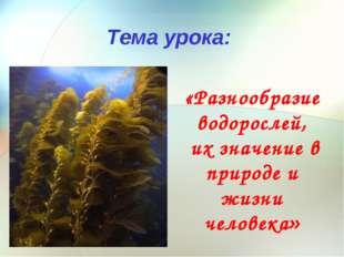 «Разнообразие водорослей, их значение в природе и жизни человека» Тема урока: