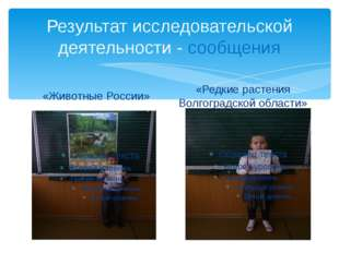 Результат исследовательской деятельности - сообщения «Животные России» «Редки
