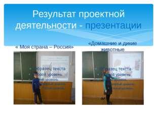 Результат проектной деятельности - презентации « Моя страна – Россия» «Домашн