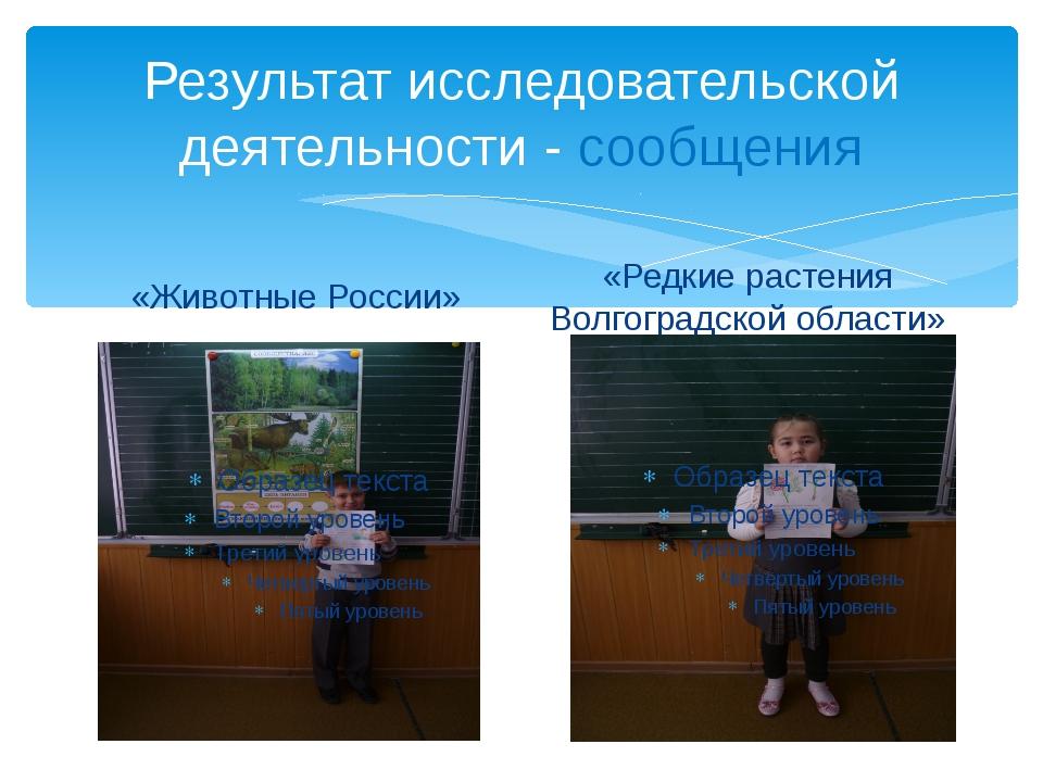 Результат исследовательской деятельности - сообщения «Животные России» «Редки...