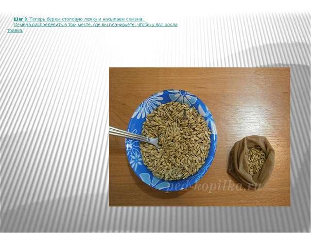 Шаг 3. Теперь берем столовую ложку и насыпаем семена. Семена распределить в...
