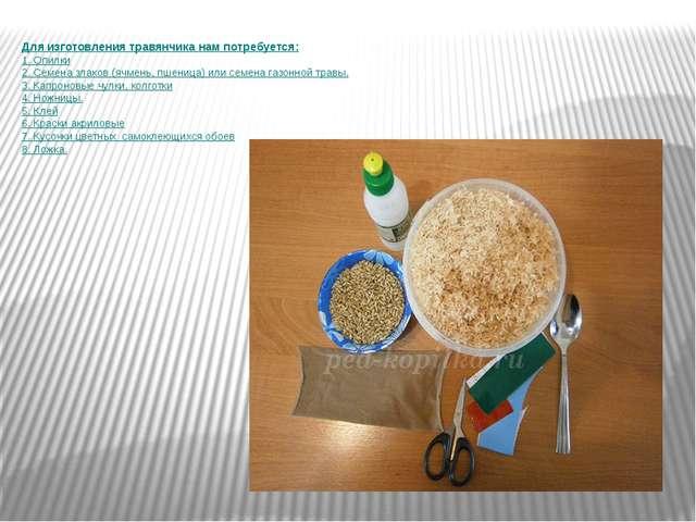 Для изготовления травянчика нам потребуется: 1. Опилки 2. Семена злаков (ячме...