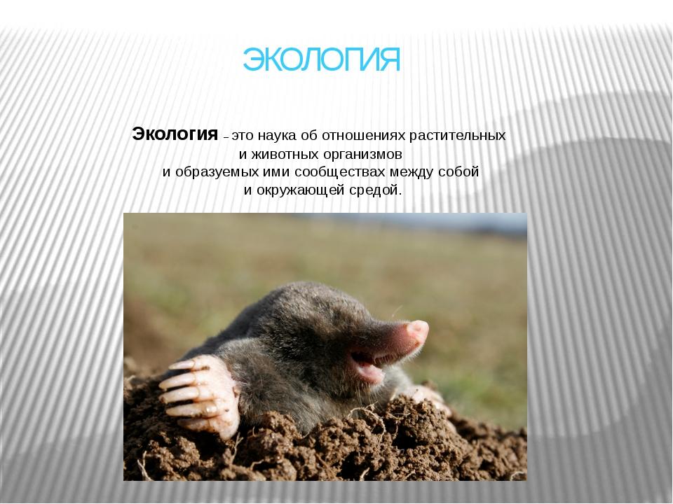 ЭКОЛОГИЯ Экология– это наука об отношениях растительных и животных организмо...