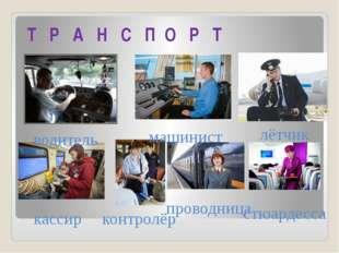 Т Р А Н С П О Р Т водитель машинист лётчик кассир контролёр проводница стюард