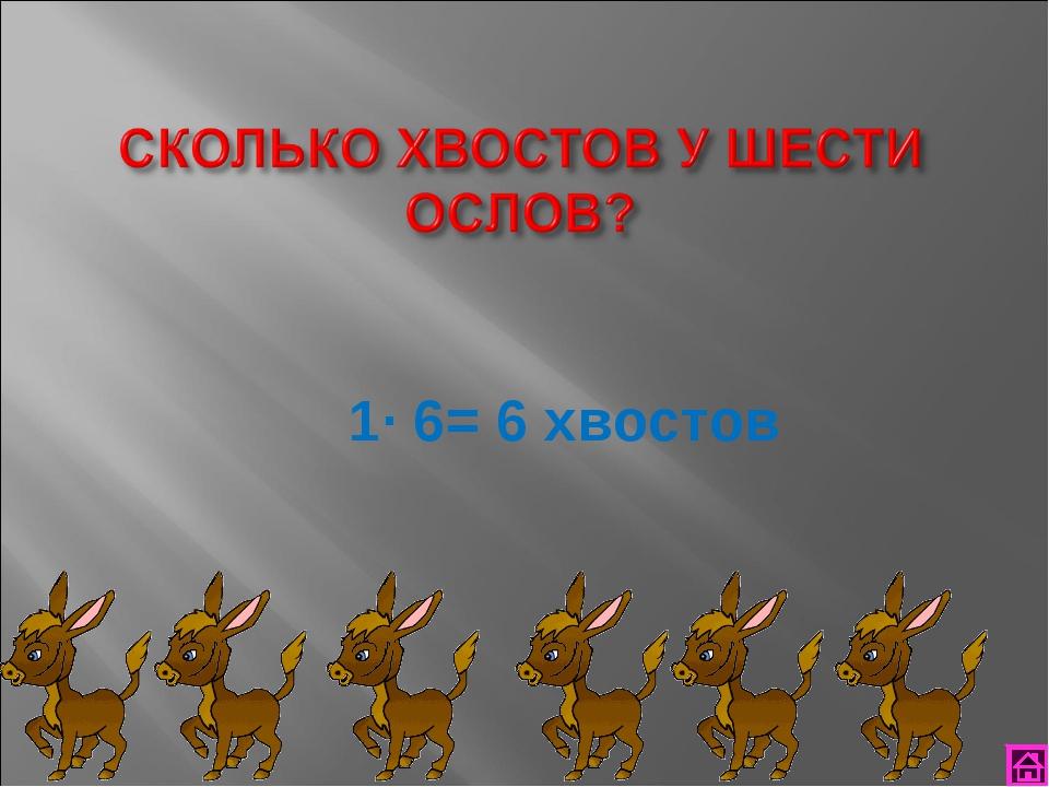 1∙ 6= 6 хвостов