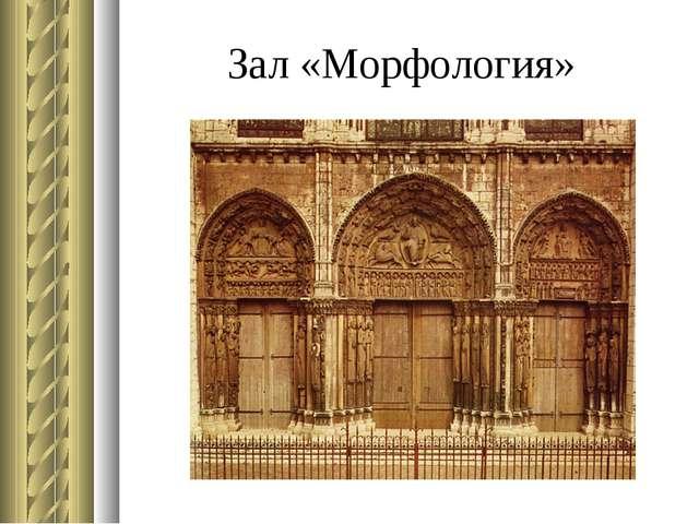 Зал «Морфология»