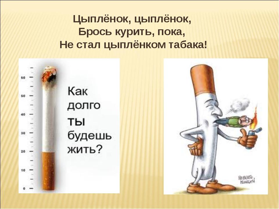 Цыплёнок, цыплёнок, Брось курить,пока, Не стал цыплёнком табака!