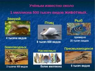 Учёным известно около 1 миллиона 500 тысяч видов животных. Насекомых Рыб Земн
