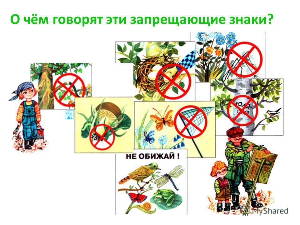 Мир окружающий примеры класс гдз экологический 2 знак