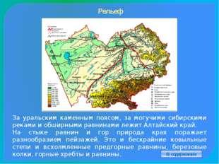 Первое поселение Около 3 тысяч лет назад на территории Алтайского края посели