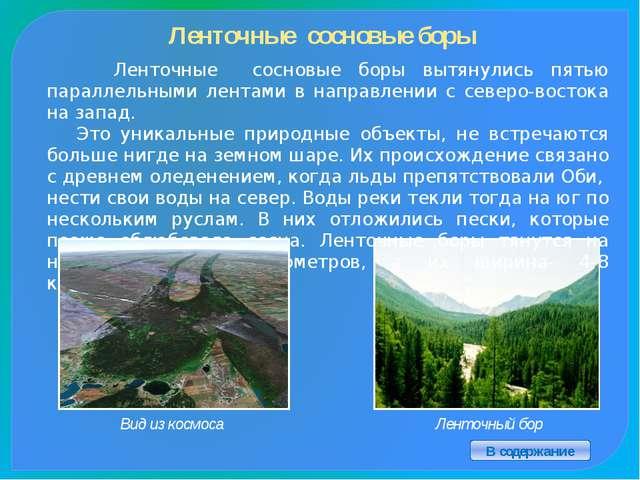 Крупнейшие города Алтайского края В содержание