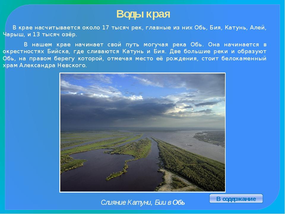 Известные люди нашего края Панкратов-Чёрный А.В. Калашников М.Т. Ползунов И.И...