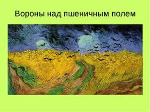 Вороны над пшеничным полем