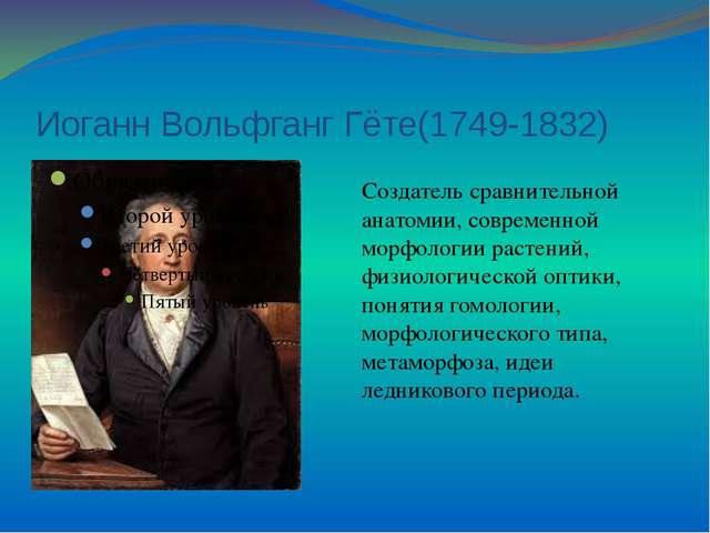Иоганн Вольфганг Гёте(1749-1832) Создатель сравнительной анатомии, современно...