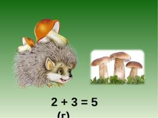 2 + 3 = 5 (г)
