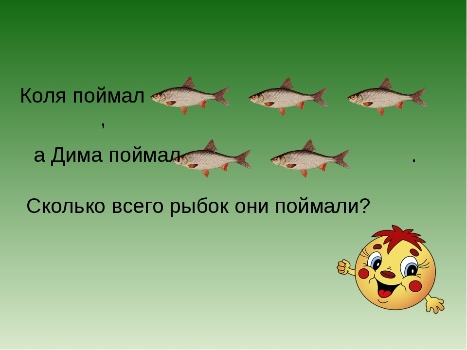 Коля поймал , Сколько всего рыбок они поймали? а Дима поймал .