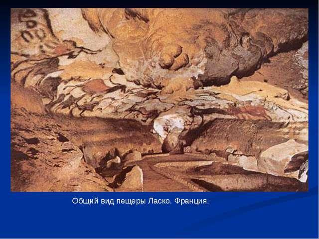 Общий вид пещеры Ласко. Франция.
