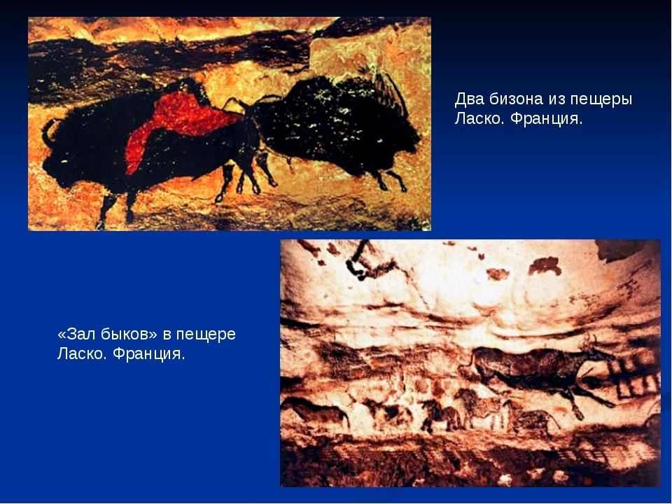 Два бизона из пещеры Ласко. Франция. «Зал быков» в пещере Ласко. Франция.